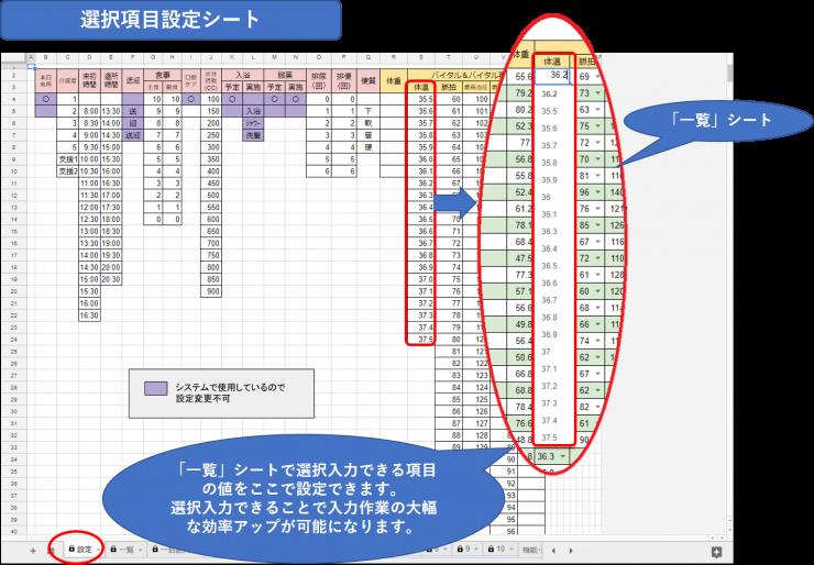 介護記録システム選択項目設定シート